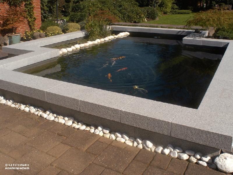 Teiche schwimmteiche oder poolanlagen natur oder for Koi und goldfische in einem teich
